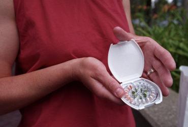 Новое правительство может отменить бесплатную контрацепцию