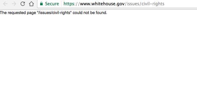 Запрос на сайте Белого дома о гражданских правах. Фото vocativ.com