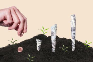 Почему инвестиции портят стартапы