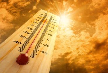 2016 год стал самым жарким в истории