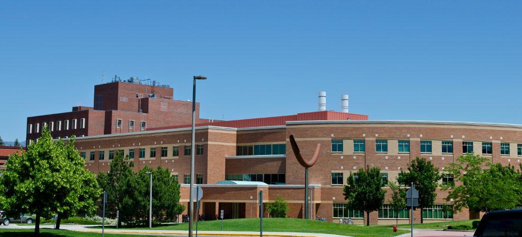 Колледж в Монтане. Фото montana.edu/