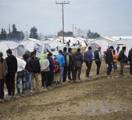 Какие проверки проходят беженцы, которые переселяются в США