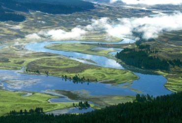 Служба национальных парков предлагает всем 10 бесплатных дней посещения парков