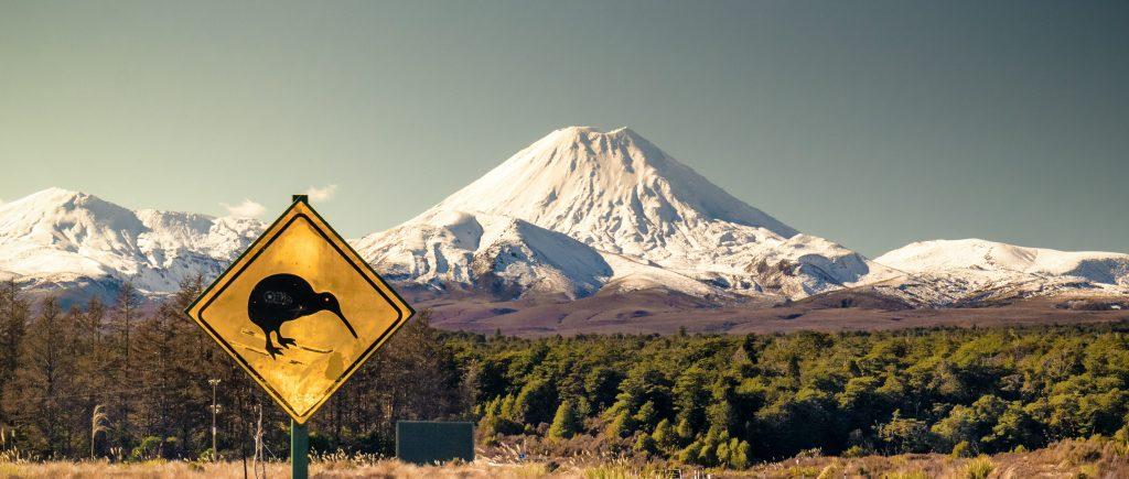 Все больше американцев задумываются о переезде в Новую Зеландию. Фото http://studyaway.ru