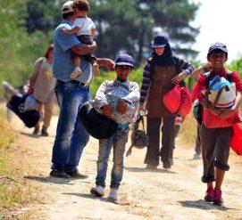 Министерство внутренней безопасности изучает возможность разделять женщин и детей, незаконно проникших в США