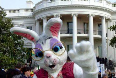 Пресс-секретарь Трампа был пасхальным кроликом в Белом доме