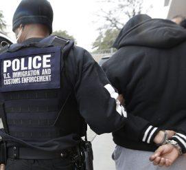 Иммиграционная полиция задержала пятерых во время интервью на грин-карту