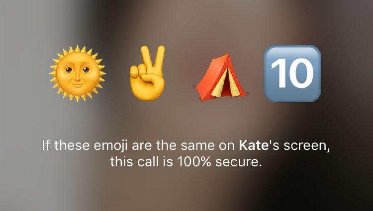 Для обеспечения безопасности звонка нужно сравнить эмодзи на экране. Фото: androidauthority.com