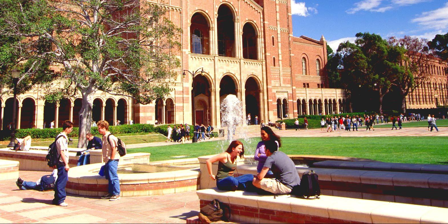 Калифорнийский университет в Лос-Анджелесе. Фото: аpstudynotes.org