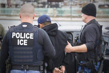 Иммиграционная служба задержала 1 300 членов преступных группировок