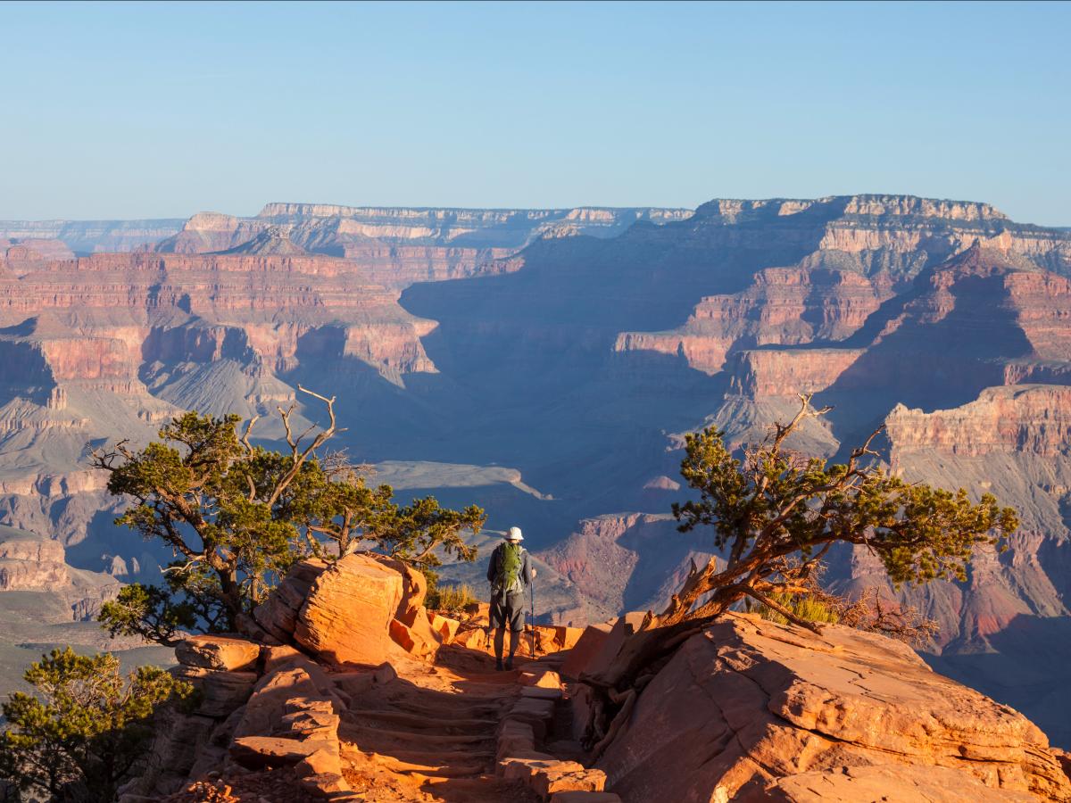 Большой каньон - один из самых глубоких в мире. Фото: businessinsider.com