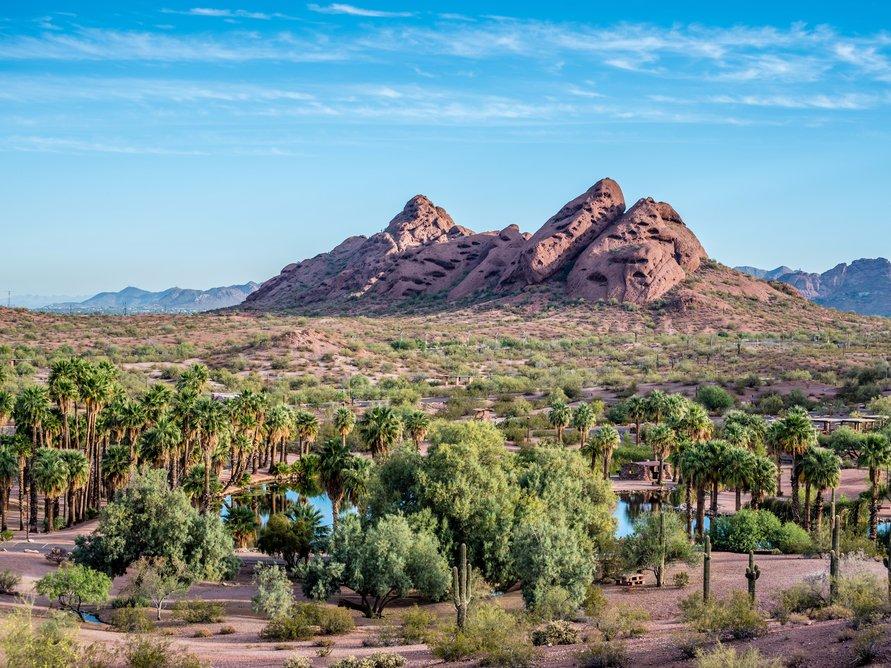 Феникс - самый большая столица штата в США. Фото: businessinsider.com
