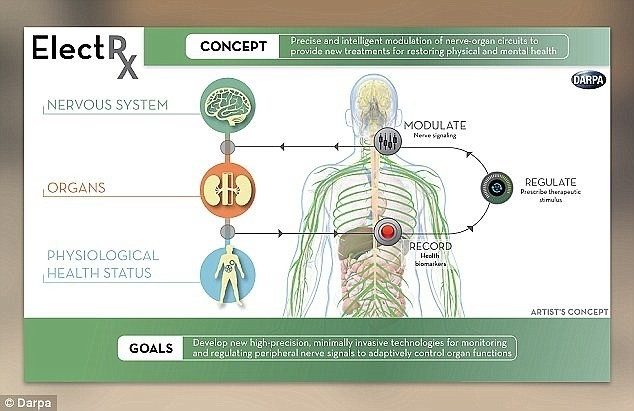 Схема работы ElectRX. Фото DARPA