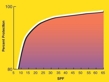Как SPF защищает кожу в процентном соотношении. Фото: vox.com