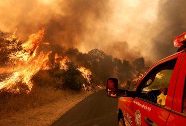 ФОТО: 8 000 людей в Калифорнии эвакуировали из-за лесных пожаров
