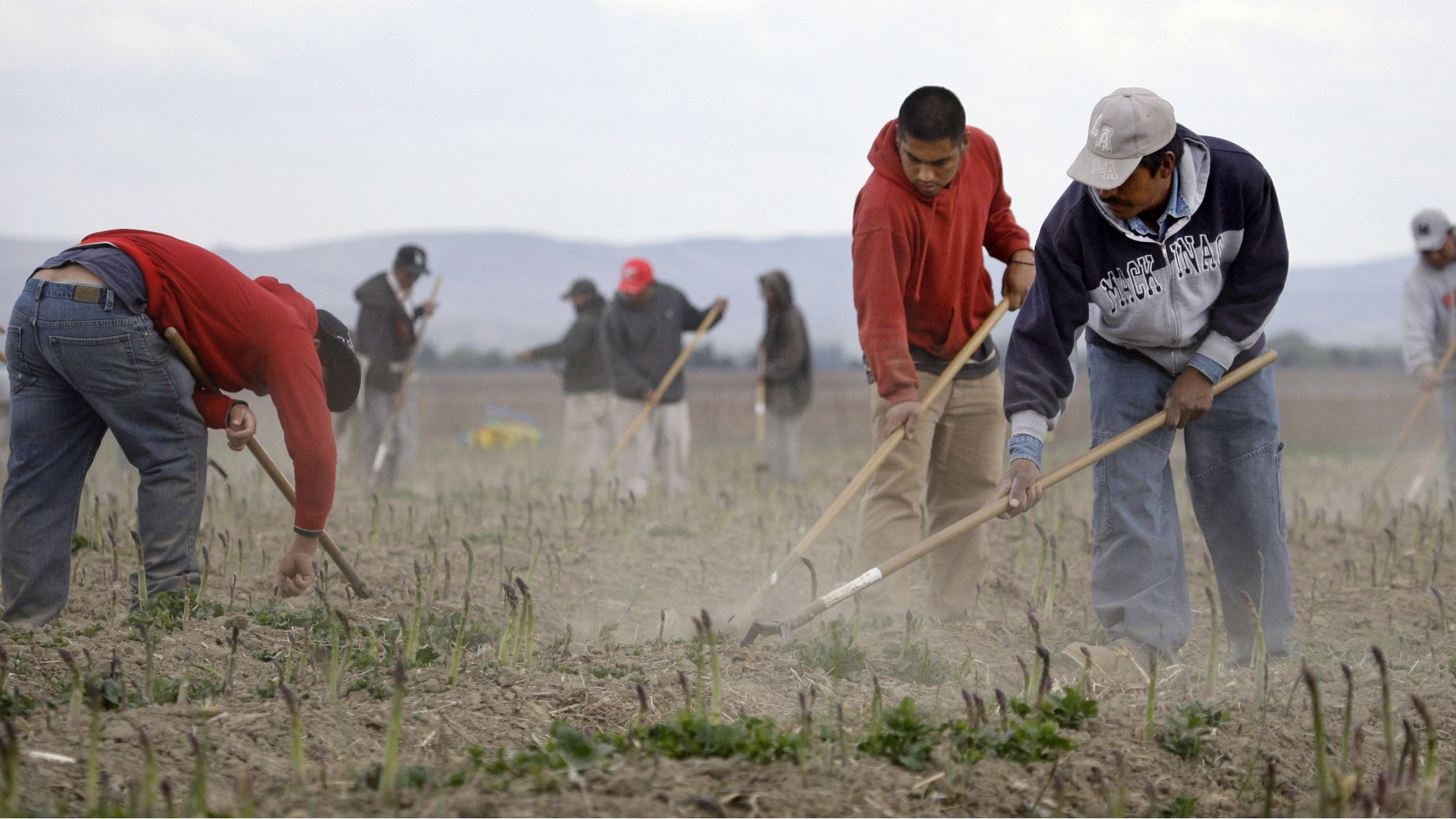 problems by farmers and immigrants in After 2000, both farm employers and worker advocates agreed that the best way to deal with unauthorized workers in agriculture would be to legalize their immigration status and simultaneously make it easier for farmers to hire temporary foreign workers legally.