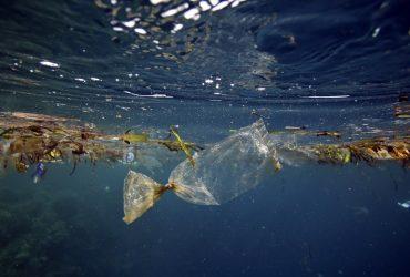 В Тихом океане появилось первое мусорное государство