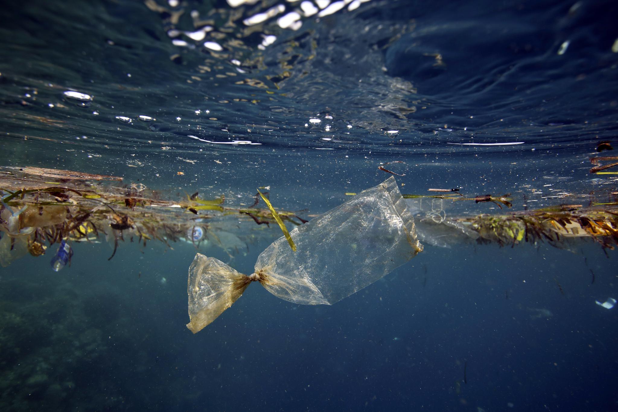 trash ocean