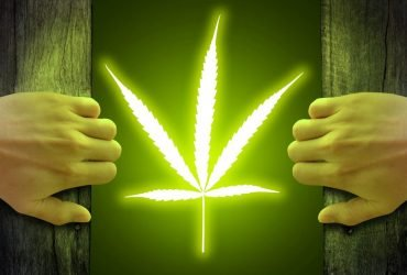 Употребление марихуаны улучшает сексуальную жизнь — ученые