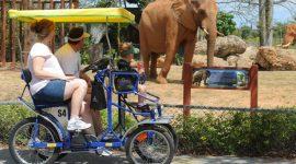 Скидка на вход в зоопарк Майами