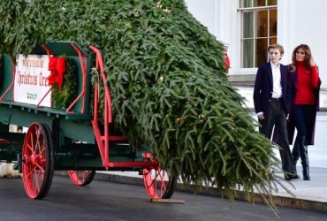 ВИДЕО: Мелания Трамп с сыном приняли главную елку Белого дома