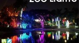 День жутких свитеров в зоопарке Майами