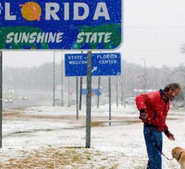"""Снежные бури до конца недели: куда движется американская """"погодная бомба"""""""