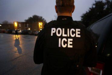 Во Флориде задерживают иммигрантов после попытки получить справку о несудимости в полиции