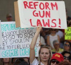 Сенаторы Флориды приняли оружейную реформу