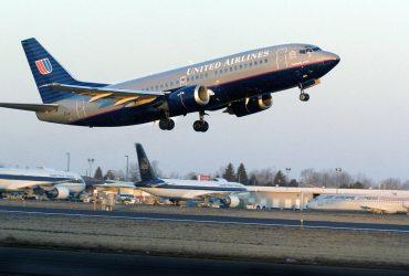 На рейсе United Airlines из-за некомпетентности команды умер щенок