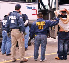 Иммиграционная полиция провела один из крупнейших рейдов на нелегальных иммигрантов