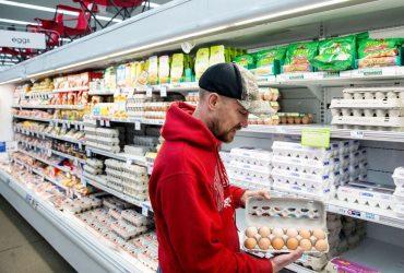 Американская ферма отзывает 207 миллионов яиц из-за вспышки сальмонеллеза