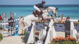Бесплатный вход на конное соревнование