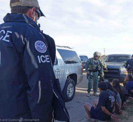 Иммиграционная полиция арестовала 225 нелегалов в Нью-Йорке. Среди задержанных — русскоязычные