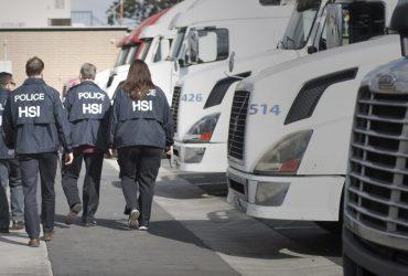Иммиграционная полиция утроила число расследований против работодателей, нанимающих нелегалов