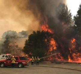 Тысячи людей эвакуированы из-за пожаров в Северной Калифорнии