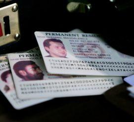 Иммиграционная служба продлила срок действия условной грин-карты