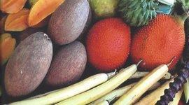 Фестиваль тропических фруктов