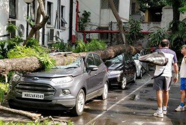Как подготовить автомобиль к штормовому сезону