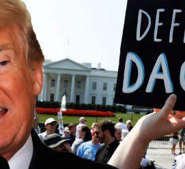 Федеральный судья потребовал возобновить программу DACA к концу августа