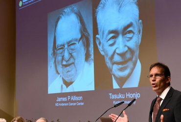 Американец и японец получили Нобелевскую премию по медицине за новый метод лечения рака