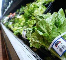 Не стоит есть салат-латук на День благодарения – в нем может быть кишечная палочка