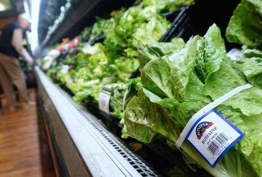 Не стоит есть салат-латук на День благодарения — в нем может быть кишечная палочка