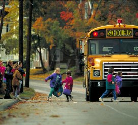 5 убитых, 7 раненых: машины сбивают детей, которые идут к школьным автобусам