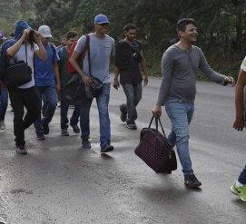 Новый караван иммигрантов направился в США