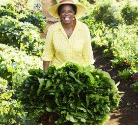 Опра Уинфри и ее странные привычки: поездки с хлебом, огромный огород и экономия на авокадо