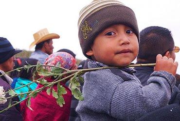 У детей-иммигрантов отнимут бесплатные уроки английского и юридическую помощь