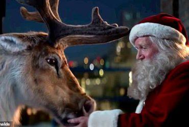Мерзкие открытки и издевательства над северным оленем: антирождественские преступления